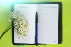 Taccuino e penna su verde Fotografie Stock Libere da Diritti