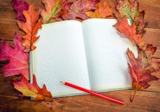 Taccuino vuoto con le foglie e la matita della quercia Fotografie Stock Libere da Diritti