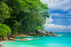 Tachai海岛的海 免版税库存照片