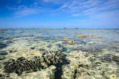 Tachai海岛 免版税库存照片