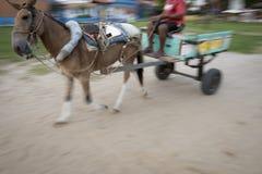 Tache floue de mouvement traditionnelle de cheval et de chariot Photo stock