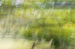 Tache floue de mouvement, tronc d'arbres et congé abstraits, backgrou de vert jaune Image stock