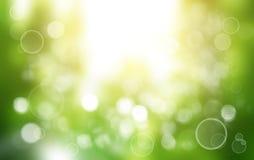 Tache floue de ressort ou de fond d'été Photographie stock