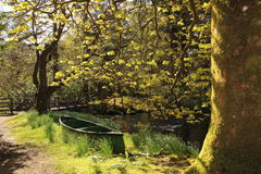 Tache pittoresque cachée dans le loch Ard Photo libre de droits