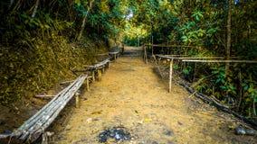 Taches de nature et de forêt chez Phulabani, Kandhamal image stock