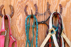 Tack. Displayed in a  room royalty free stock photo