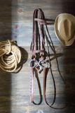 Tack room. A horse tack room with the door open stock image