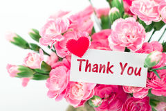 Tacka dig för att card och härligt blomma av det rosa nejlikaflödet Royaltyfri Bild