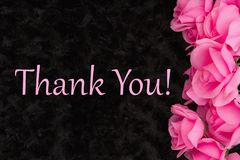 Tacka dig meddelandet med rosa rosor på svart arkivfoton