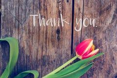 """Tacka dig: Ordning av färgrika tulpan på en lantlig trätabell, """"Thank dig arkivbilder"""