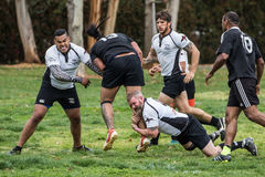 Tackled by the Leg. Redding, California: Rugby action with the Shasta Highlanders against the Redwood Sharks of Santa Rosa Stock Photo
