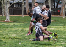 Tackled. Redding, California: Rugby action with the Shasta Highlanders against the Redwood Sharks of Santa Rosa Royalty Free Stock Image