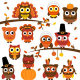 Tacksägelse och Autumn Themed Vector Owl Collection Royaltyfri Bild