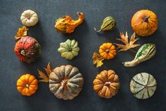 Tacksägelsedag eller säsongsbetonad höstlig bakgrund med pumpor a Royaltyfri Bild