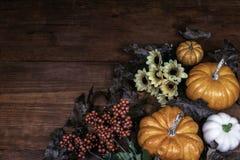 Tacksägelsedekorbakgrund med sörjer kottar med en blandning av solrosor, ekollonar, pumpor och squash, vakten, bär och sidor arkivfoton
