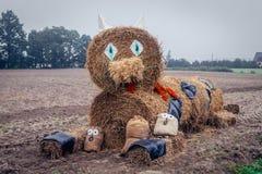 Tacksägelsefest i Polen Fotografering för Bildbyråer