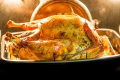 Tacksägelsefestmåltiden med kalkon och mosar potatos Royaltyfria Bilder