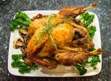 Tacksägelsefestmåltiden med kalkon och mosar potatos Arkivfoton