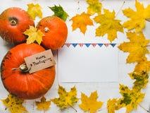 Tacksägelsehälsningkort, pumpor och höstsidor royaltyfria foton