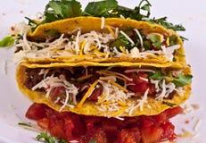 Taco Stockfotografie