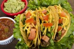 Taco Fotografering för Bildbyråer