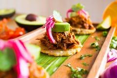 Taco Ciągnąca wieprzowina Zdjęcia Royalty Free