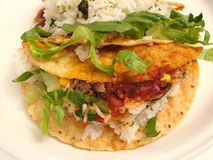 Taco di Barbacoa Fotografie Stock Libere da Diritti