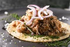 Taco gastronomico delizioso Carne suina, cipolla e sedano sopra la tortiglia di cereale fotografie stock libere da diritti