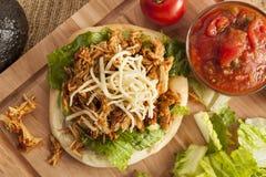 Taco mexicano caseiro do Flatbread com carne imagens de stock royalty free