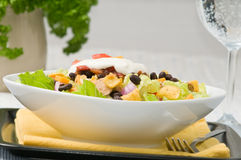 Free Taco Salad Royalty Free Stock Images - 10825179