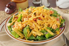 Taco salad with chicken Royalty Free Stock Image