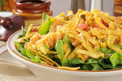 Taco Salad Closeup Royalty Free Stock Images