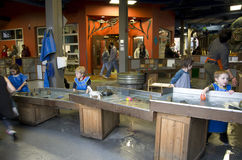 Tacoma Children Muzealni obraz royalty free