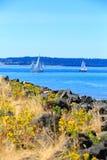 Tacoma strand med panoramautsikt Fotografering för Bildbyråer