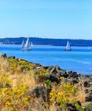 Tacoma strand med panoramautsikt Royaltyfri Fotografi