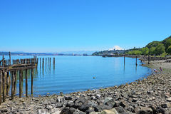 Tacoma during summer time Royalty Free Stock Images