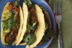 Tacos épicé de lentille d'en haut Photo libre de droits