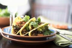 Tacos épicé de Vegan Photos libres de droits