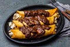 tacos зеленого мексиканского соуса кухни пряный традиционный Традиционные мексиканские энчилада цыпленка с пряным poblano моли са стоковое фото
