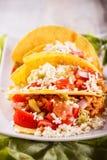 Tacos цыпленка Стоковое фото RF