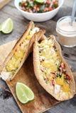 Tacos avec le poulet, le fromage de cheddar et le pico de Gallo Images libres de droits