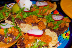 Tacos avec le radis Photos libres de droits