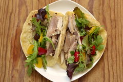 Tacos with chicken and vegetable salad Royalty Free Stock Photos