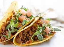 Tacos de boeuf avec du fromage et la tomate de laitue Image libre de droits