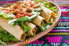 Tacos de Flautas de pollo e de alimento da salsa mexicano caseiro Cidade do México imagem de stock royalty free