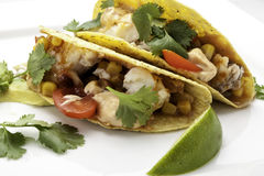 Tacos de pescados con la tortilla de maíz imagen de archivo libre de regalías