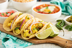 Tacos with  eggs for breakfast Royalty Free Stock Photos