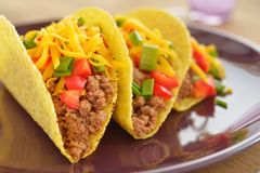 Tacos with ground beef and vegetables Royalty Free Stock Photos