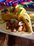 Tacos mexicain avec des nachos Photographie stock libre de droits