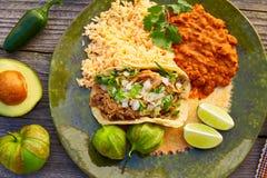 Tacos mexicain de carnitas avec le Salsa Photo stock